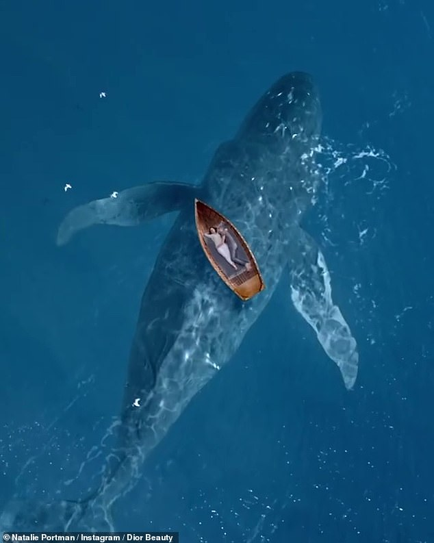 Nature all around them: They snuggle in a drifting row boat while a whale swims underneath